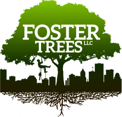 Foster Trees